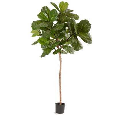 Large Silk Fiddle Leaf Fig Tree in Pot - Wayfair