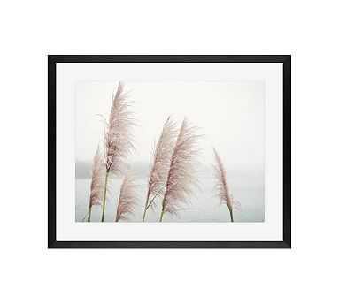 "Wild Pampas by Lupen Grainne, 20 x 16"", Wood Gallery Frame, Black, Mat - Pottery Barn"