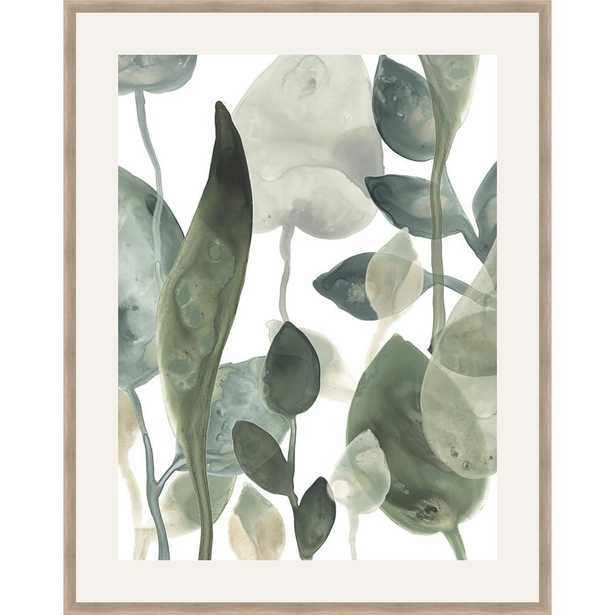 Somersethouse Publishing 30 in. x 24 in. 'water Leaves Iii' by June Erica Vess Framed Wall Art, Green - Home Depot