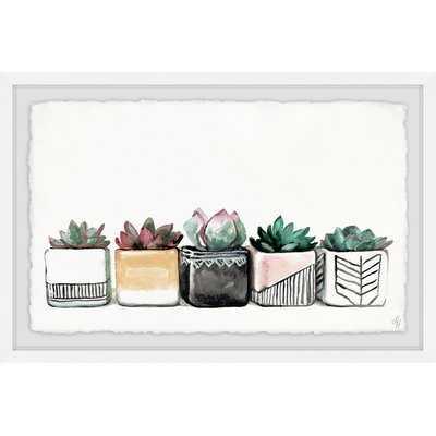 'Succulent Quintet' Framed Print - Wayfair