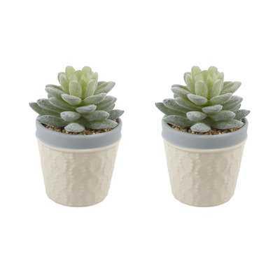 Faux Succulent Desktop Plant - Wayfair