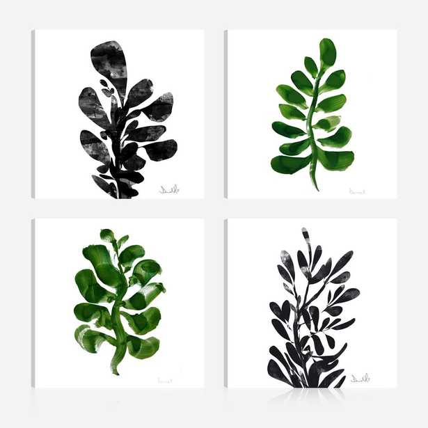 Botanical Plant Prints16 in. x 16 in. Giclee Print Canvas Wall Art (Set of 4), Green/ Black/ White - Home Depot