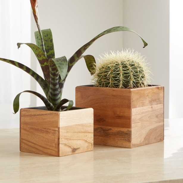 Arcaydia Small Tabletop Wood and Metal Planter - Crate and Barrel