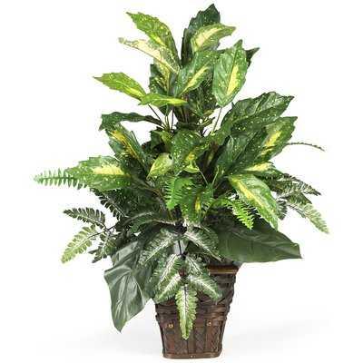 Silk Mixed Greens Foliage Plant in Decorative Vase - AllModern