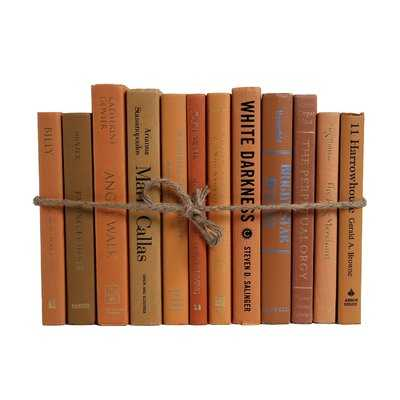 Authentic Decorative Books - By Color Modern Canyon ColorPak (1 Linear Foot, 10-12 Books) - Wayfair