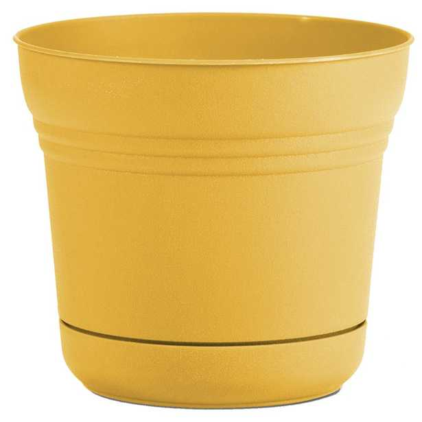 Bloem Saturn 14 in. x 12.75 Earthy Yellow Plastic Planter w/ Saucer - Home Depot