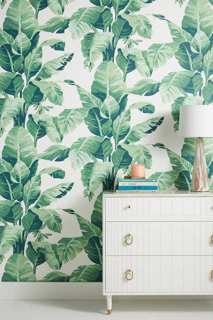 Pacifico Palm Wallpaper - Anthropologie