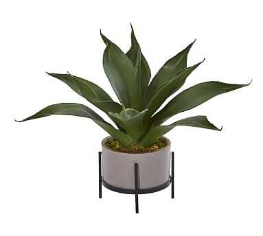 Faux Agave Succulent In Decorative Planter, 2' - Pottery Barn