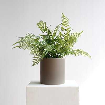 Artificial Staghorn Fern Plant in Pot - Wayfair