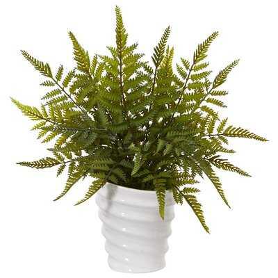 Fern Plant in Planter - Wayfair