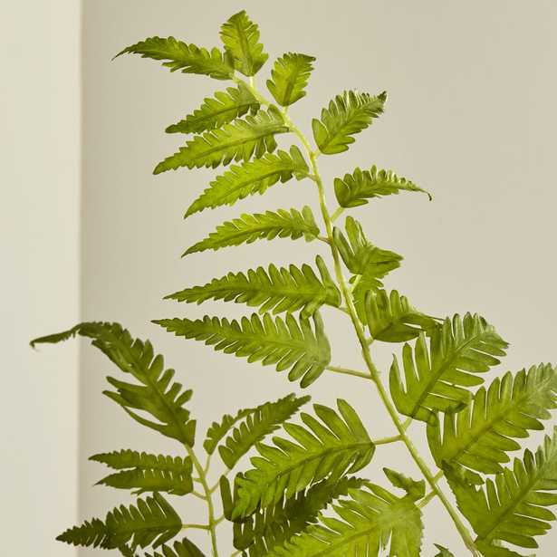Artificial Fern Spray - Crate and Barrel