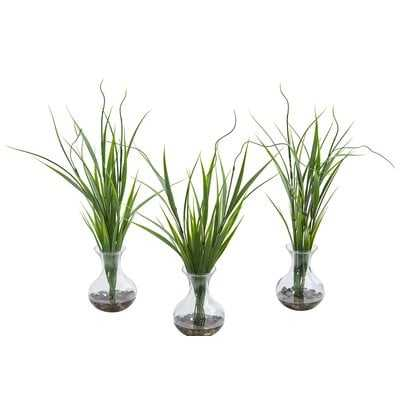 Desktop Foliage Grass Plant in Vase Set of 3 - Wayfair