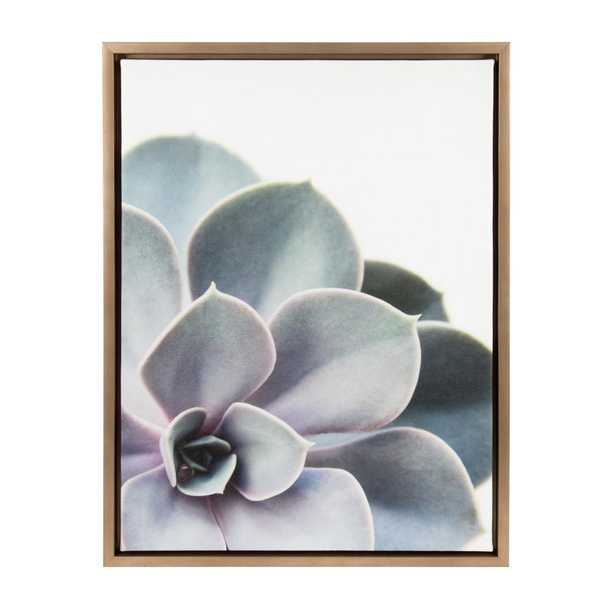 """Sylvie """"Succulent 5"""" by F2Images Framed Canvas Wall Art, Gold - Home Depot"""