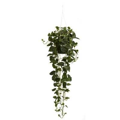 Philodendron Silk Hanging Plant in Basket - Wayfair