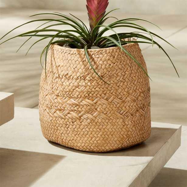 Cement Basket Small Planter - CB2