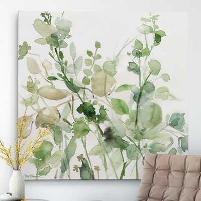 Sage Garden Sage Garden II - Picture Frame Painting Print on Canvas - Birch Lane
