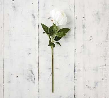Faux Peony Stems - White - Pottery Barn