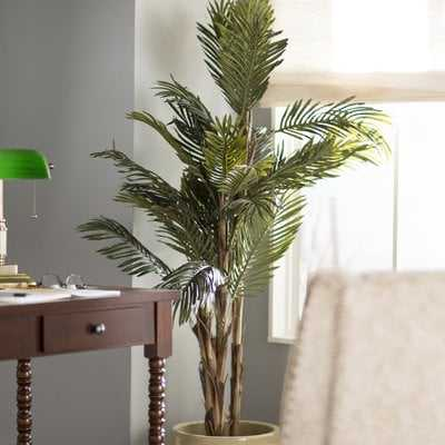 "Robellini Palm Tree in Pot, 60"" H - Wayfair"