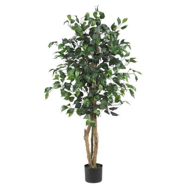 4 ft. Ficus Silk Tree - Home Depot