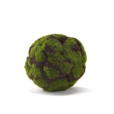 Millwood Pines Crackled Moss Ball Plant (Set of 3) - Wayfair