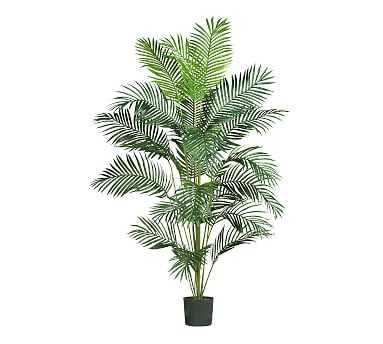 Faux Paradise Palm, 7' - Pottery Barn