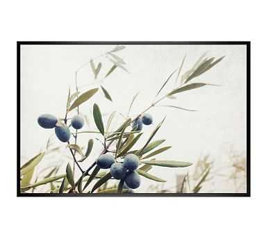 Olive Branches Lupen Grainne 42x28 Wood Gallery Black No Mat - Pottery Barn