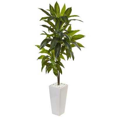 Artificial Dracaena Floor Foliage Plant in Planter - Wayfair