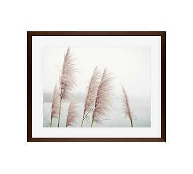 """Wild Pampas by Lupen Grainne, 20 x 16"""", Wood Gallery Frame, Espresso, Mat - Pottery Barn"""