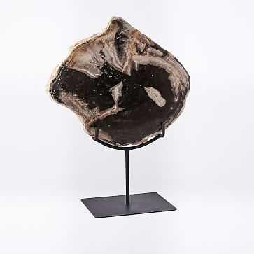 Petrified Wood Object on Stand, Large - West Elm
