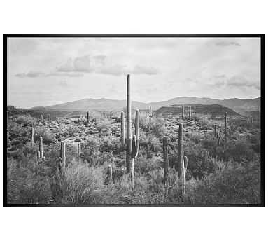 Saguaro Desert Landscape Jennifer Meyers 28x42 Wood Gallery Black No Mat - Pottery Barn