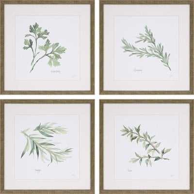 'Herbs' 4 Piece Framed Graphic Art Print Set - Wayfair