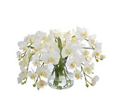 """Faux Orchid Phalaenopsis In Round Glass Vase - White, 13"""" - Pottery Barn"""