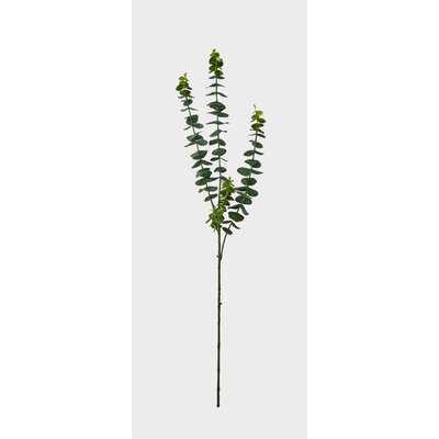 Eucalyptus Spray (Set of 3) - Wayfair