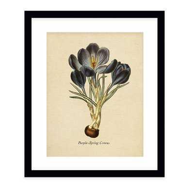 'Botanical Vintage VI' Graphic Art Print - Wayfair