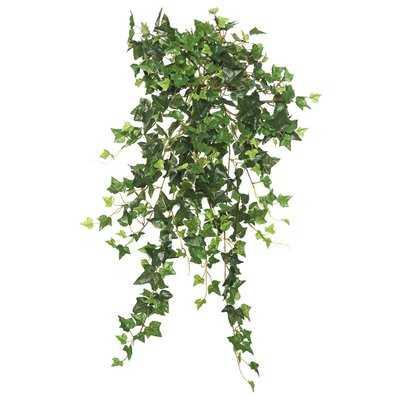 Mini Hanging Bush Ivy Plant - Wayfair