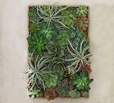 Succulent Wall, Green - Large - Pottery Barn