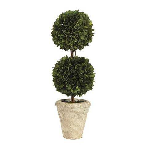 Preserved Boxwood Topiary - Double Ball - Ballard Designs