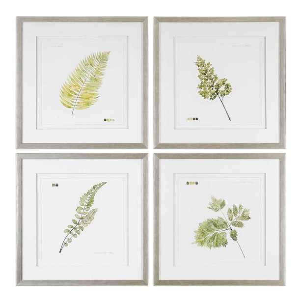 WATERCOLOR LEAF STUDY FRAMED PRINTS, S/4 - Hudsonhill Foundry