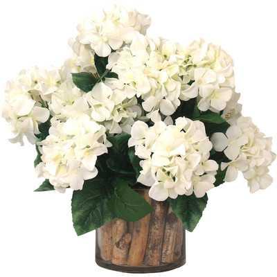 Spring Additions Hydrangea Birch in Flower Pot - Wayfair