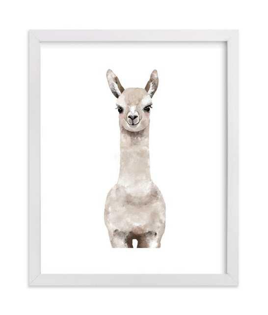 Baby Animal Llama, Framed Art Print, 8x10, White Wood Frame - Minted