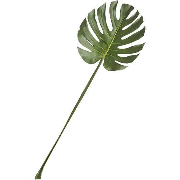 monstera leaf - CB2