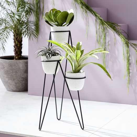 Iris Planter + Chevron Stand - Triple - West Elm