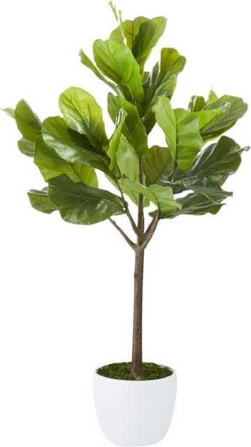 """Faux Potted Fiddle Leaf Fig, 65"""" - CB2"""