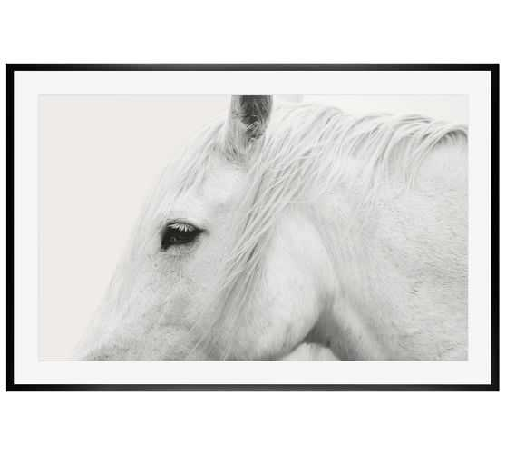 """WHITE HORSE FRAMED PRINT  42 X 28"""" BY JENNIFER MEYERS-black distressed frame with mat - Pottery Barn"""