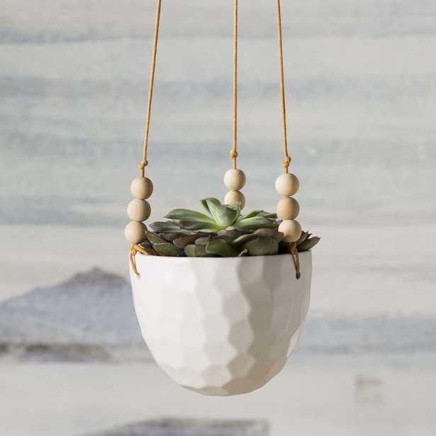 Round Ceramic Hanging Planter - Birch Lane