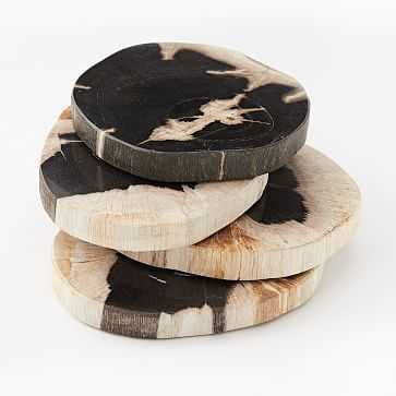 Petrified Wood Coasters, Set of 4, Black - West Elm