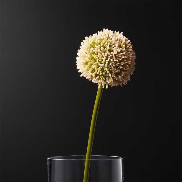 Pink Faux Allium - CB2