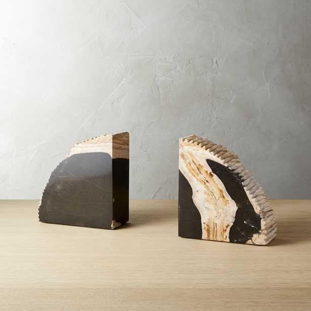 Petrified Wood Bookends Set of 2 - CB2