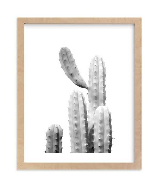 Moorten Cactus Study 1 - Minted