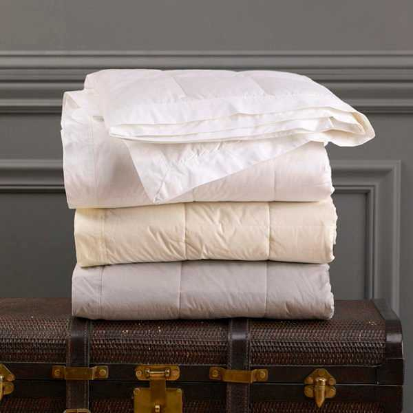 Endure™ Down Blanket - Creme - KG - Noble Feather Co.